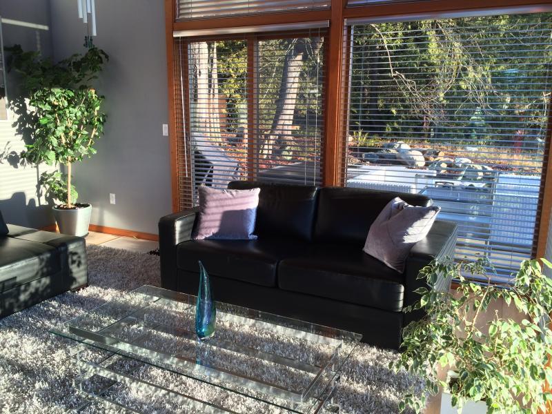 salon face à remous et bassin de jardin