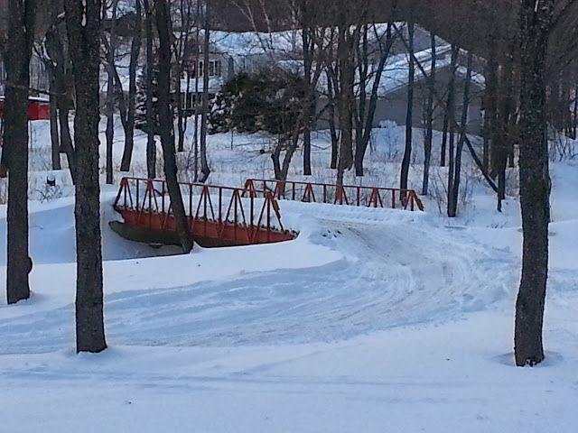 VAST trail bridge over the Bluebrook