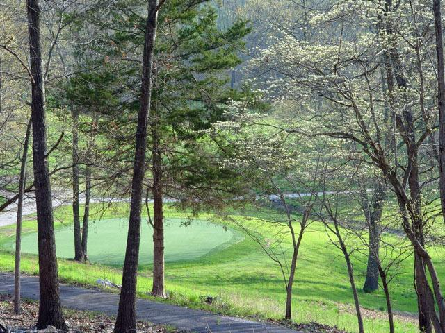 Frisbee golf & walking trails