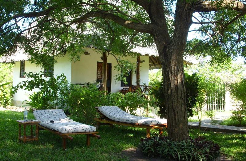 de relax en frente de casa Simba