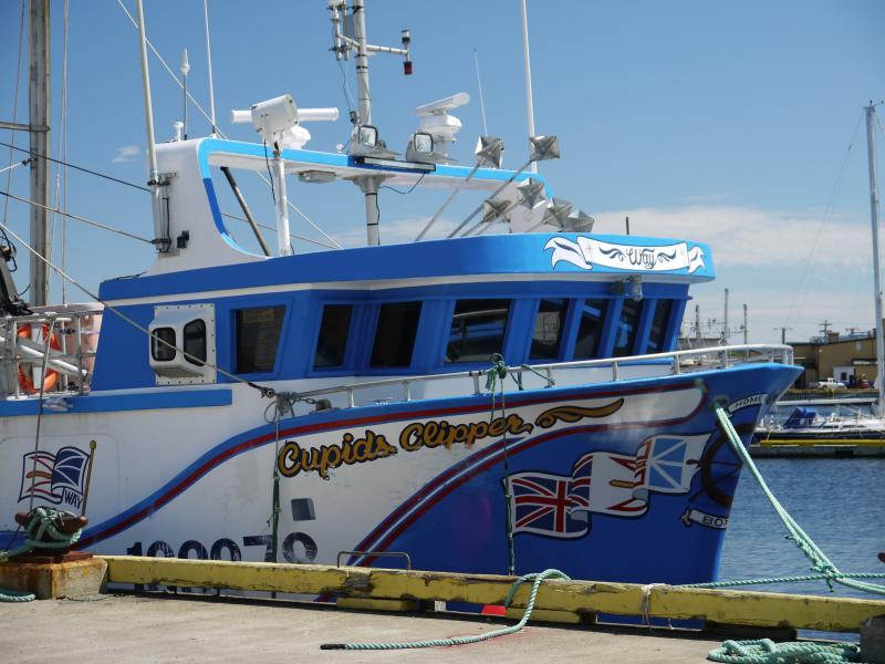 Un barco de trabajo en el puerto.