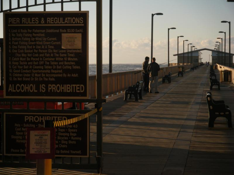 A short walk to the pier is a must where you can fish or just watch wild life.