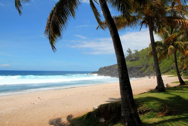 'Grand Anse' beach in 10 minutes from the residence