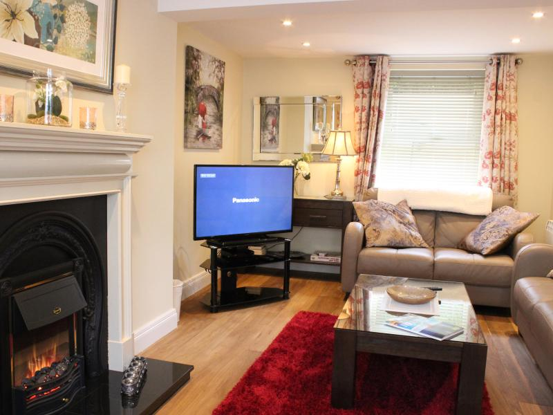 Cosy living room with electric fire. Multi.Channel Flat Screen TV Wifi
