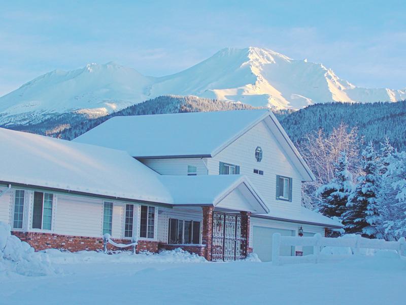 Fresh morning snow