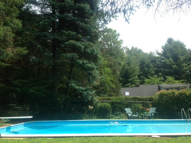 Pool with diving board.