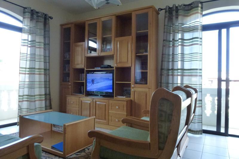Zona lounge con cavo TV e lettore DVD. divano a 3 posti, 2 singoli posti molto confortevoli divani.