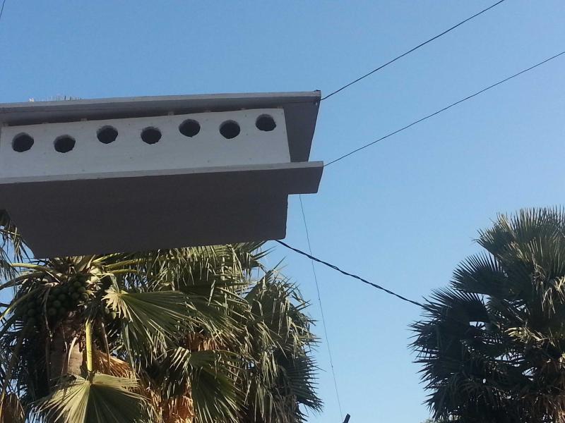 Birdhouse  Patio