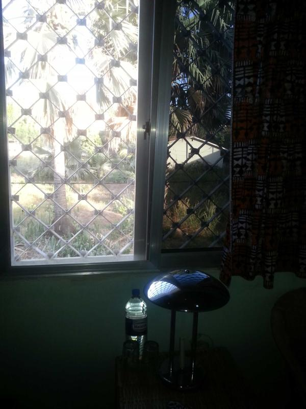 room view into an oase