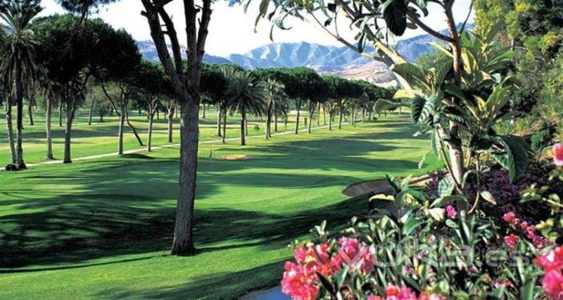 Golf Río Real