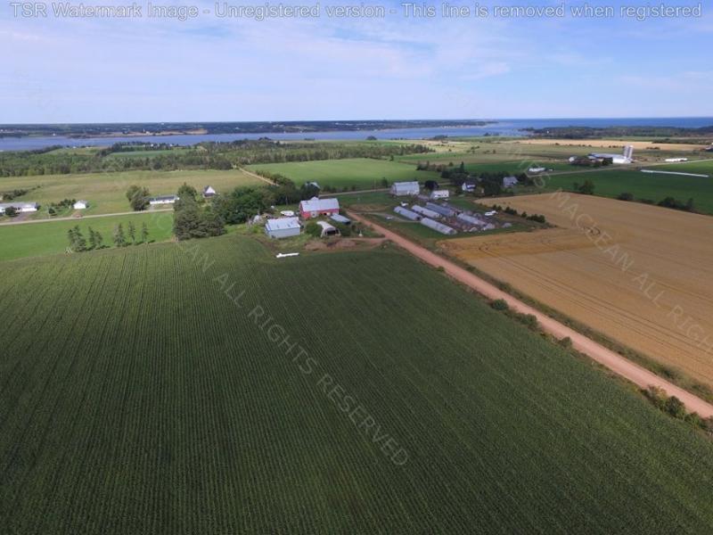 Foto de drone Jamie MacLean de bela sul oeste lote 16. Casa Mamede: no esquerda atrás das árvores