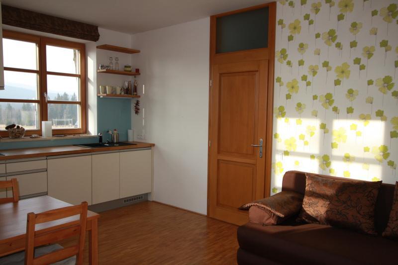 Horský apartmán Vyhlídka, Rejvíz, obývací pokoj s kuchyní