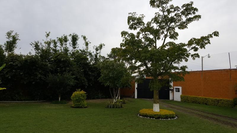 Vista desde la casa hacia la entrada