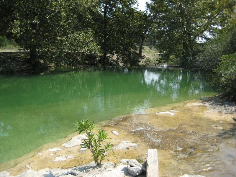 Water is so clear...you can see the shelves in Natural Spring Fed Pool.