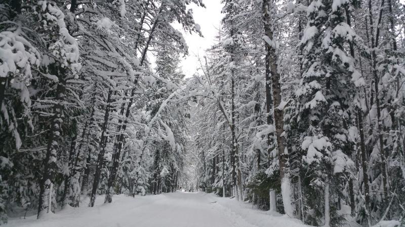 Christmas Day 2015. West Glacier  Park  entrance