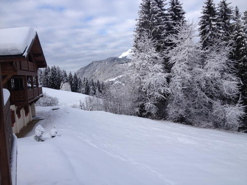 SLOPE FRONT THE CHALET
