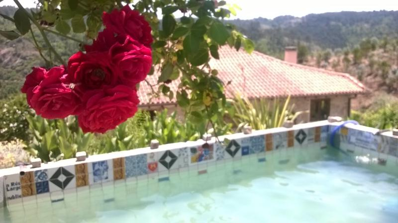 Our tiled plunge pool on your doorstep!