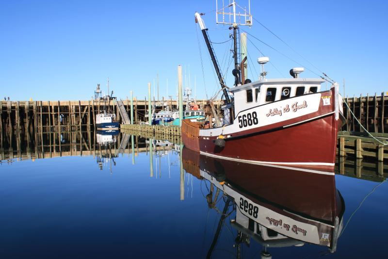 Calm day at the          Digby Wharf