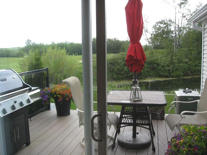 Back deck and pond