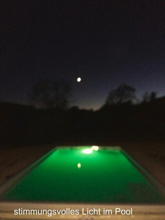 Stimmungsvolle Poolbeleuchtung