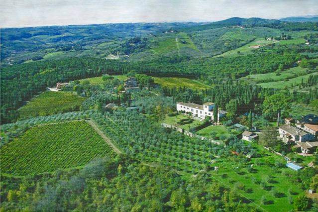 Villa in Chianti near Florence, holiday rental in Strada in Chianti