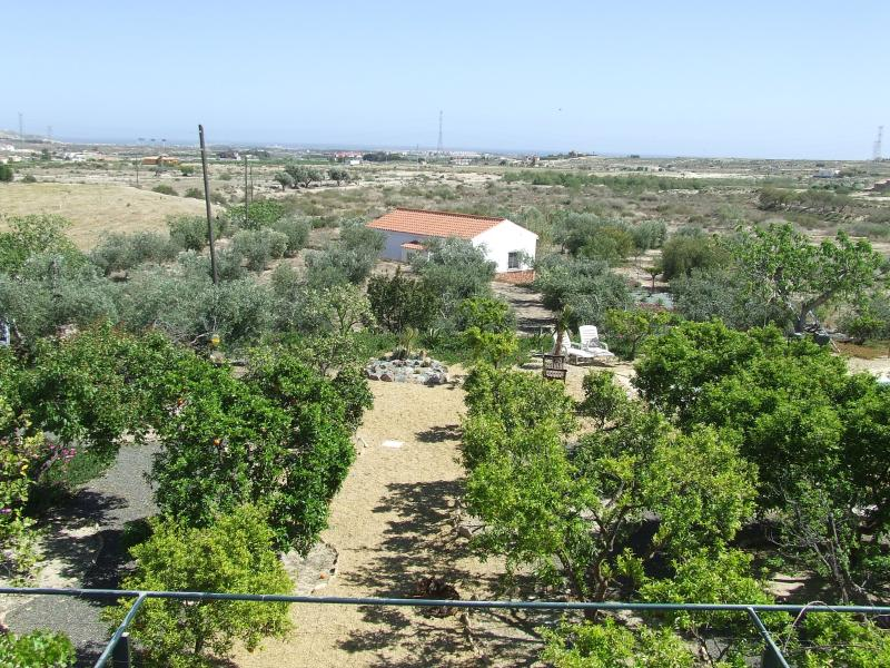 View from above the Orange grove garden apartment at Finca Arboleda