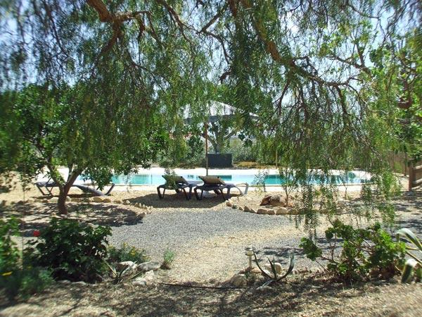 View from the Orange grove garden apartment at Finca Arboleda