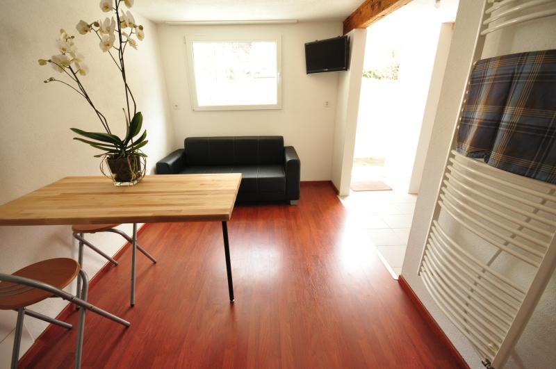 Offene Küche, Restaurants und Sofa / TV.   Sofa verwandeln sich in kleine Schlafcouch.