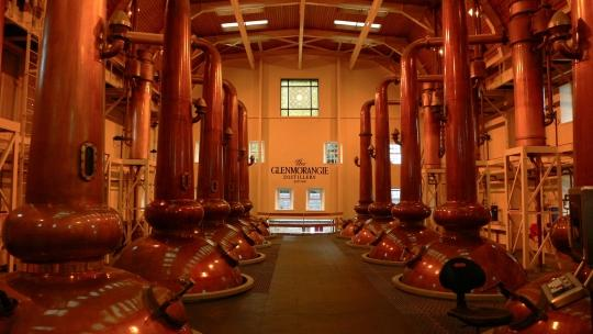 Glenmorangie Distillery circa 10 minuti di auto. Fantastico tour con degustazione alla fine.