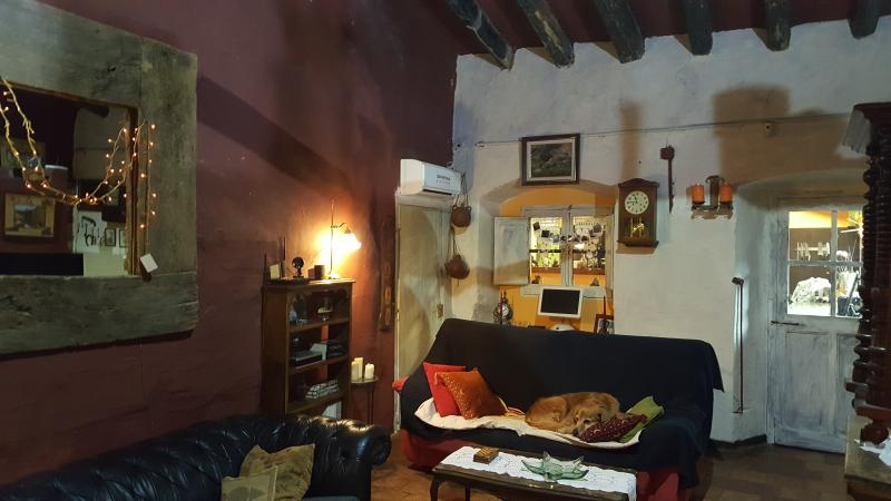 Salón chimenea  Mas Torrencito pet friendly Girona