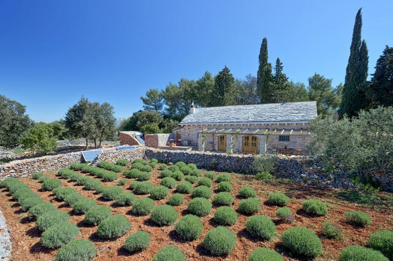 Stone dalmatian house Humac, vacation rental in Hvar Island