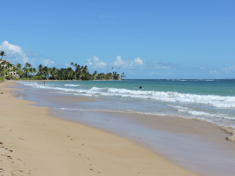 playa frente Palmas Doradas