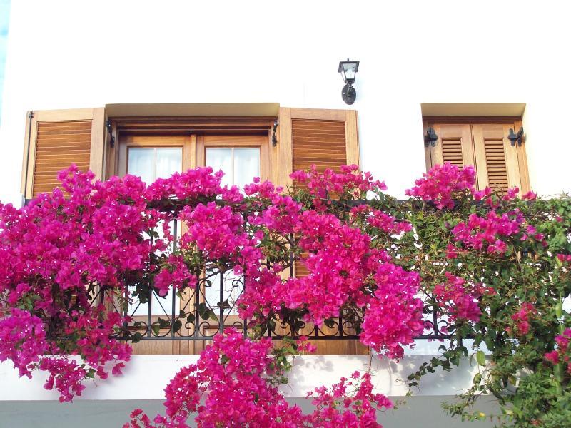 Benigna Studios, casa vacanza a Agia Marina