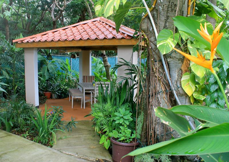 Luscious tropical garden to relax and enjoy the sounds of nature.