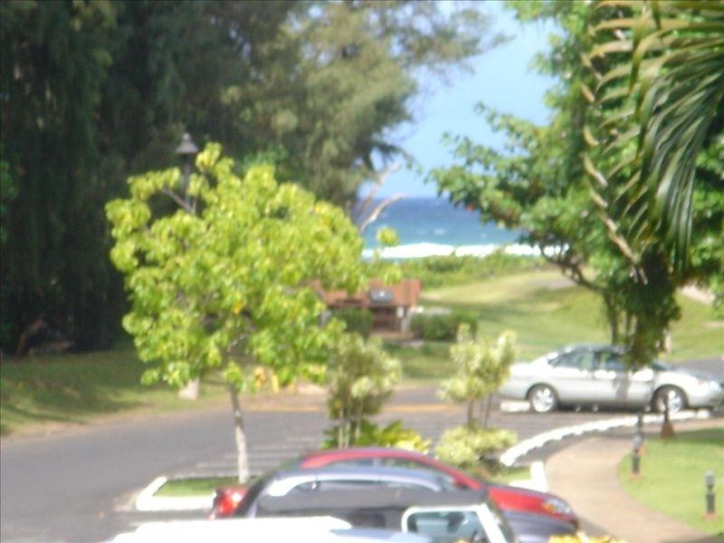 Partial Ocean View Resort 800 SF, 2 A/C, WIFI, 2 TV's Washer/Dryer Full Kitchen, holiday rental in Lihue