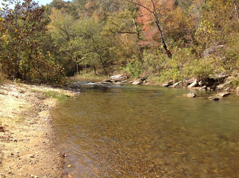 Beautiful Piney Creek--Cabin sits right there in the middle of 14 acres!