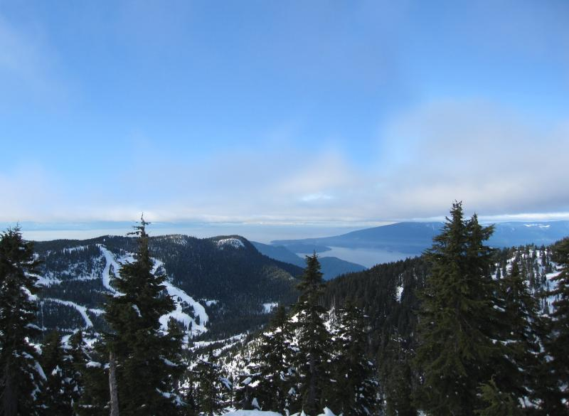 View from Cypress snow shoe trails