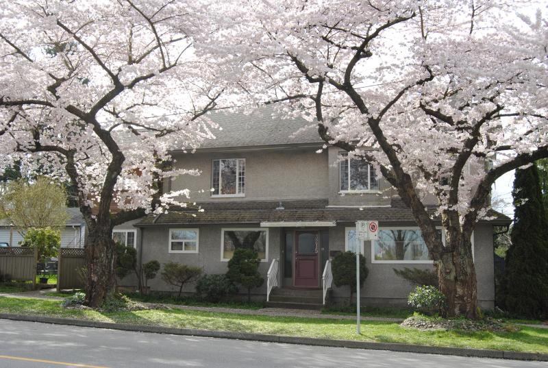 A Gem In The  Centre of Vancouver, vakantiewoning in Vancouver