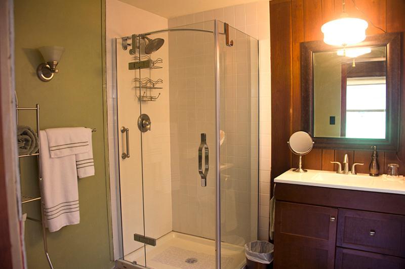 New bathroom in paneled bedroom