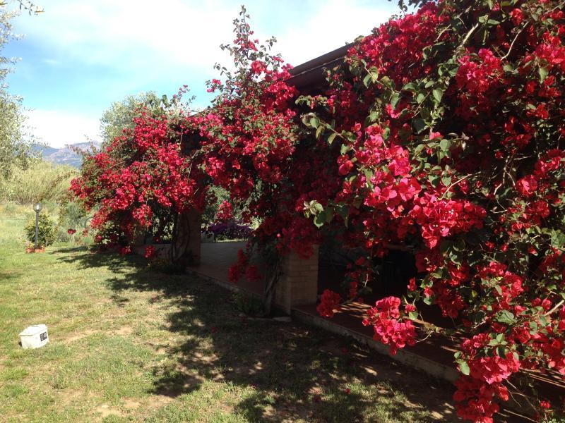 Casa Santina, Ferienwohnung in Girasole