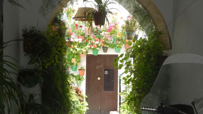 Charming courtyards