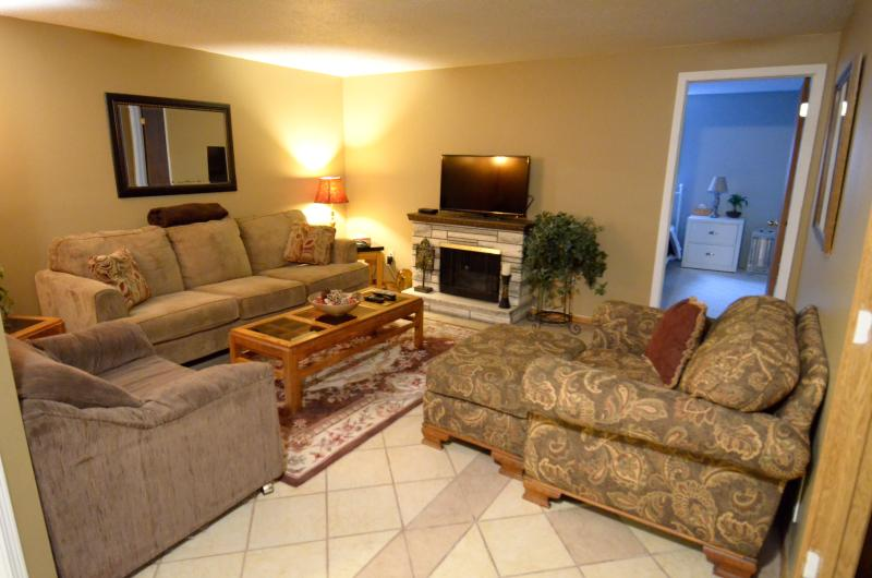 Lower level living room with Satellite and DVD