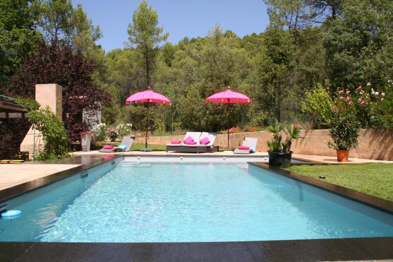 GITE dans BASTIDE PROVENCALE 4 étoiles, holiday rental in La Verdiere