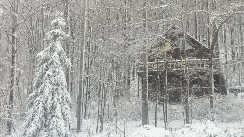 When the snow starts to fall, the landscape turns into a winter wonderland.