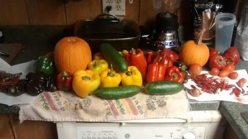 We grow lots of goodies!
