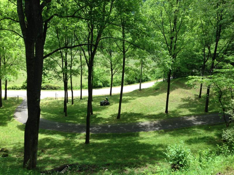 View from the front porch in May.