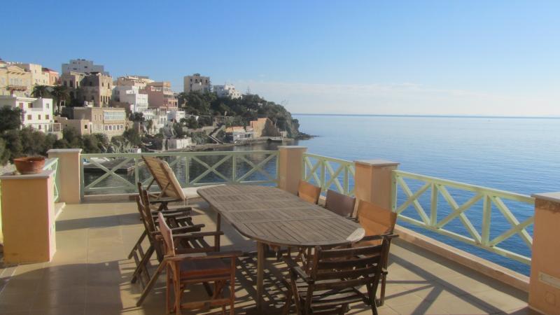 View from the terrace / Vue de la terrasse