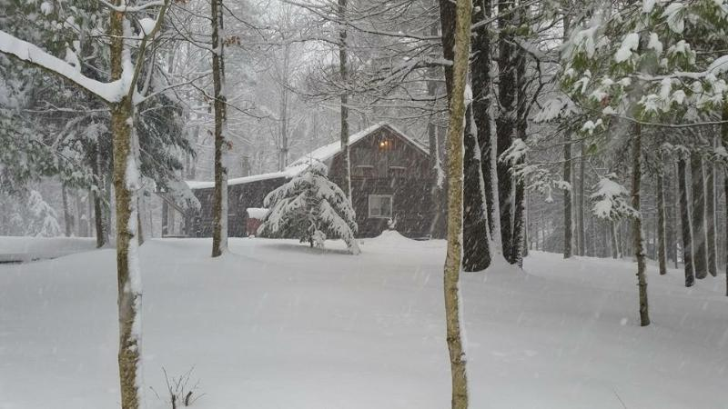 Adirondack Log Cabin getaway, holiday rental in Glenfield