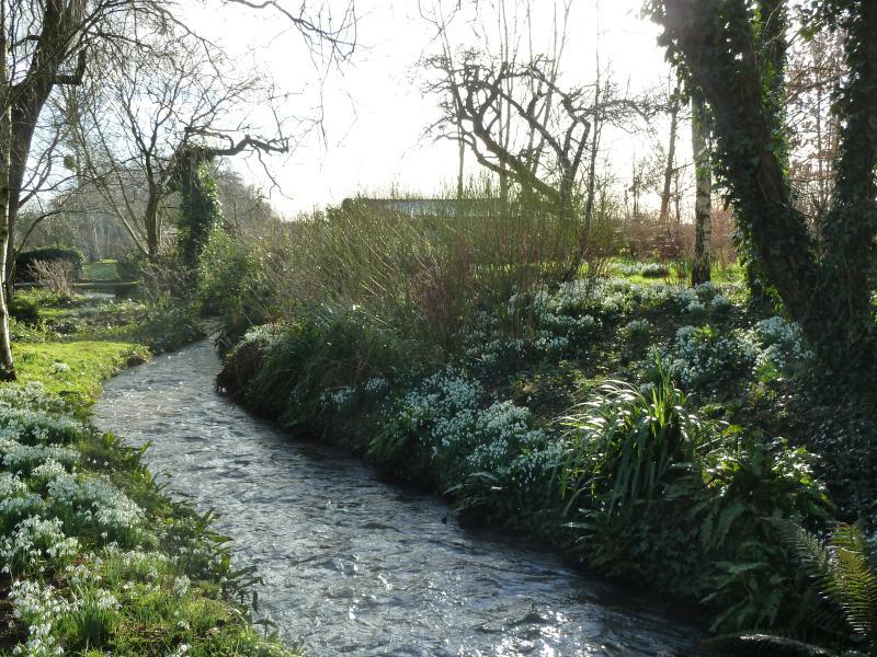 stream through the garden.