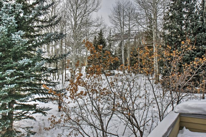 Choose this Snowmass vacation rental home for an unforgettable Colorado getaway!